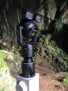 Vleermuizen observeren in UNESCO World Heritage Mulu National Park Borneo dankzij MIC camera's van Bosch